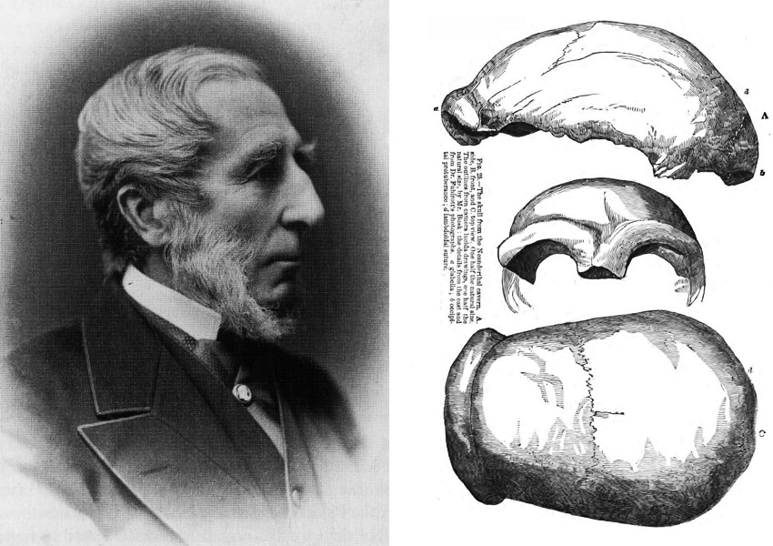 George Busk and Neanderthal artefacts