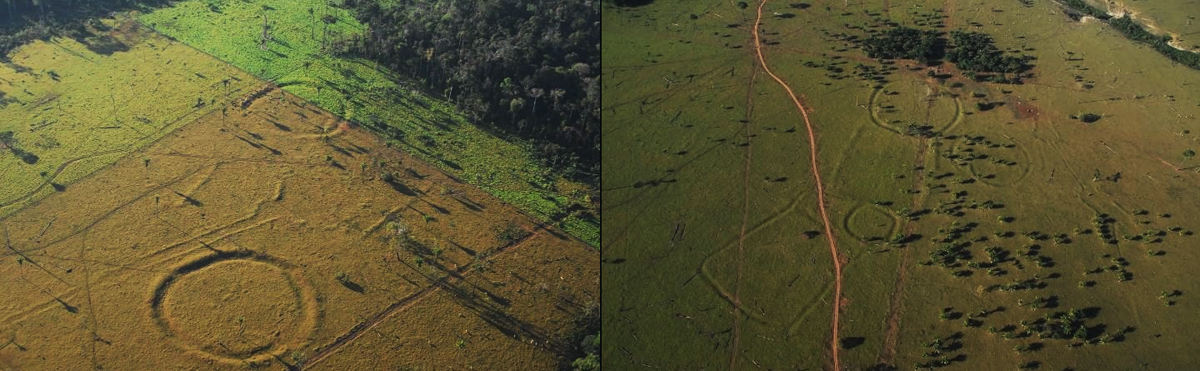 Enclosures discovered in Amazon rainforest