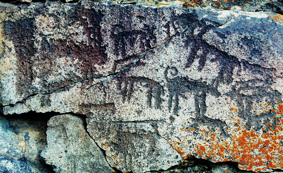 Rock art discovered in Turkey