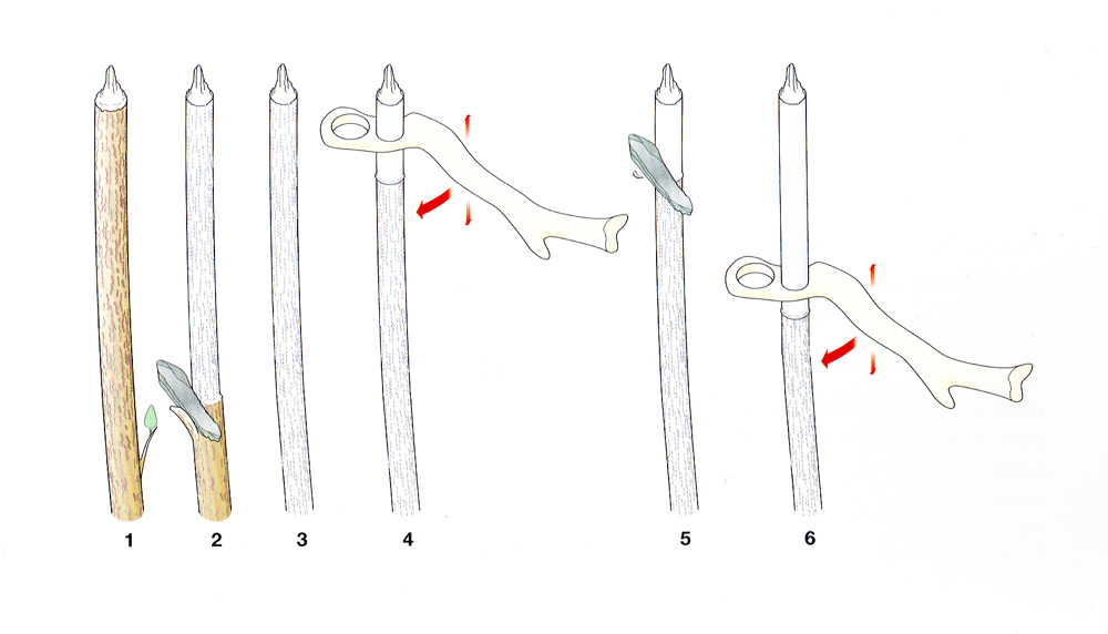 Diagram showing a perforated baton being used as a gauge to make a spear shaft.
