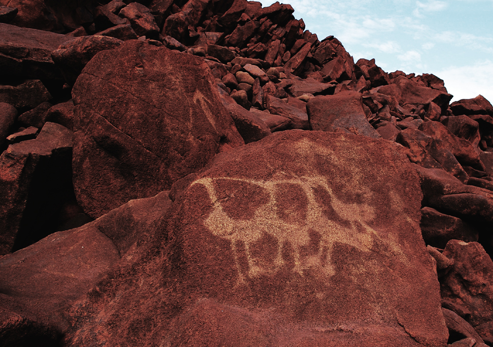 Dampier rock art in Australia
