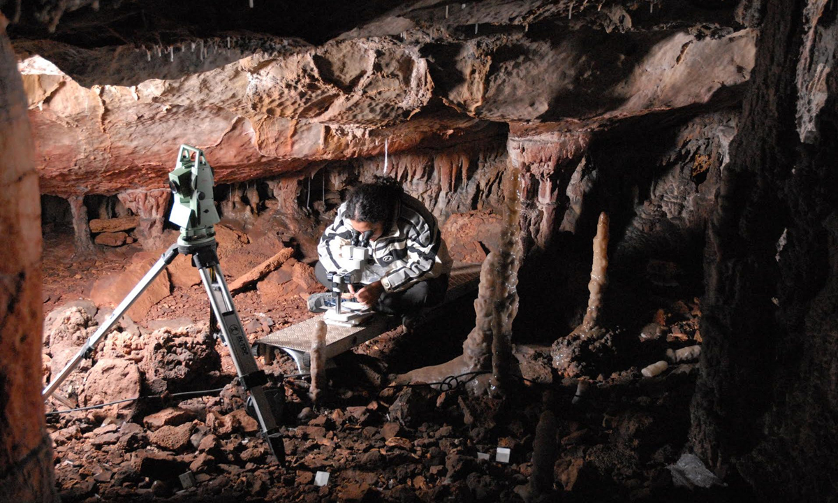 Hunting Ice Age cave lions