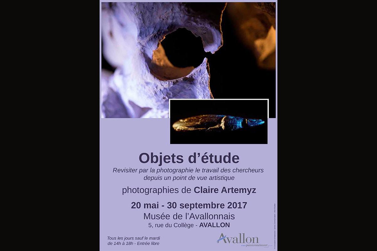 Objets d'étude de Claire Artémyz