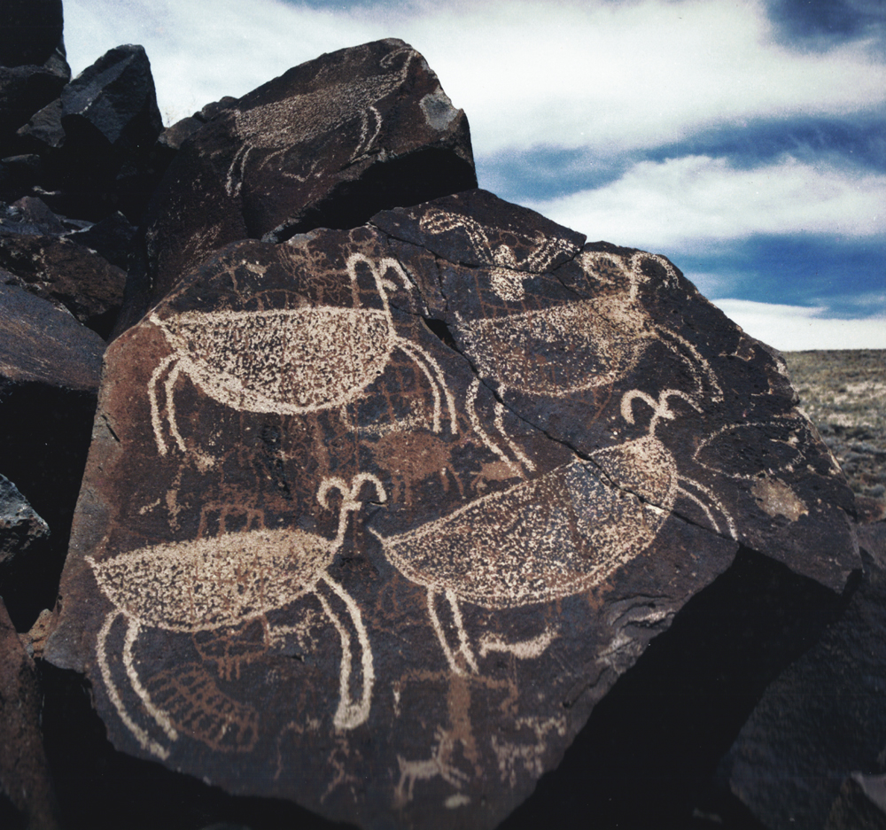rock art petroglyphs of Coso in North America