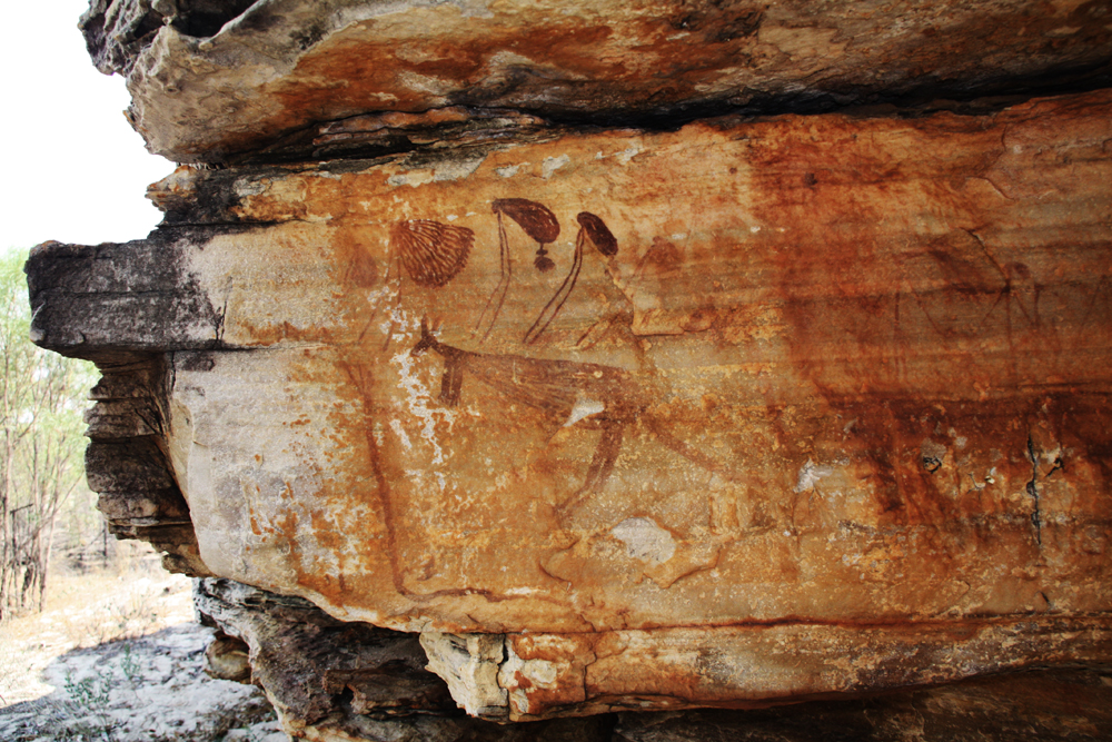 Rock Art of Australia in danger due to lack of policy concerning ancient cave paintings and rock engravings