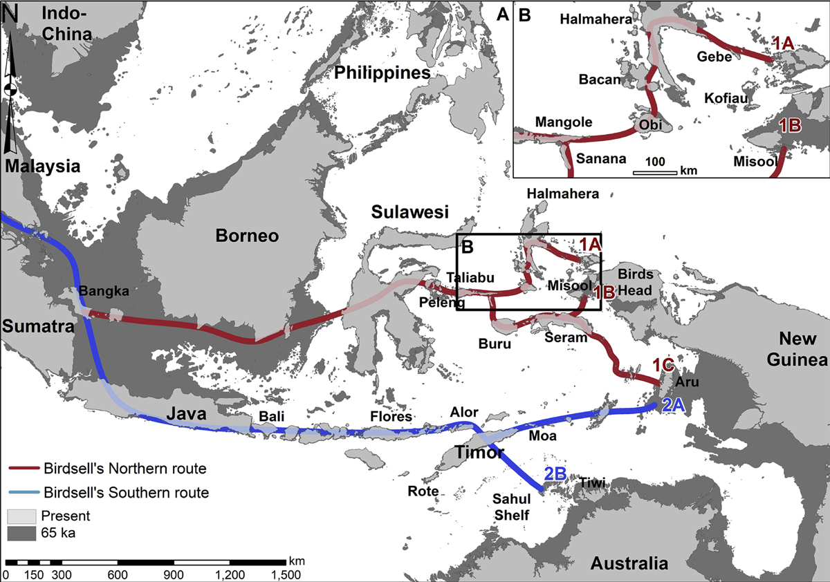 new research which reveals the most likely route the ancestors of Aboriginal people took to enter Australia for the first time tens of thousands of years ago.