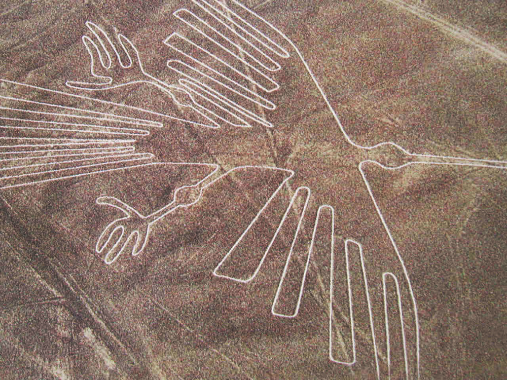 humming bird geoglyph in peru