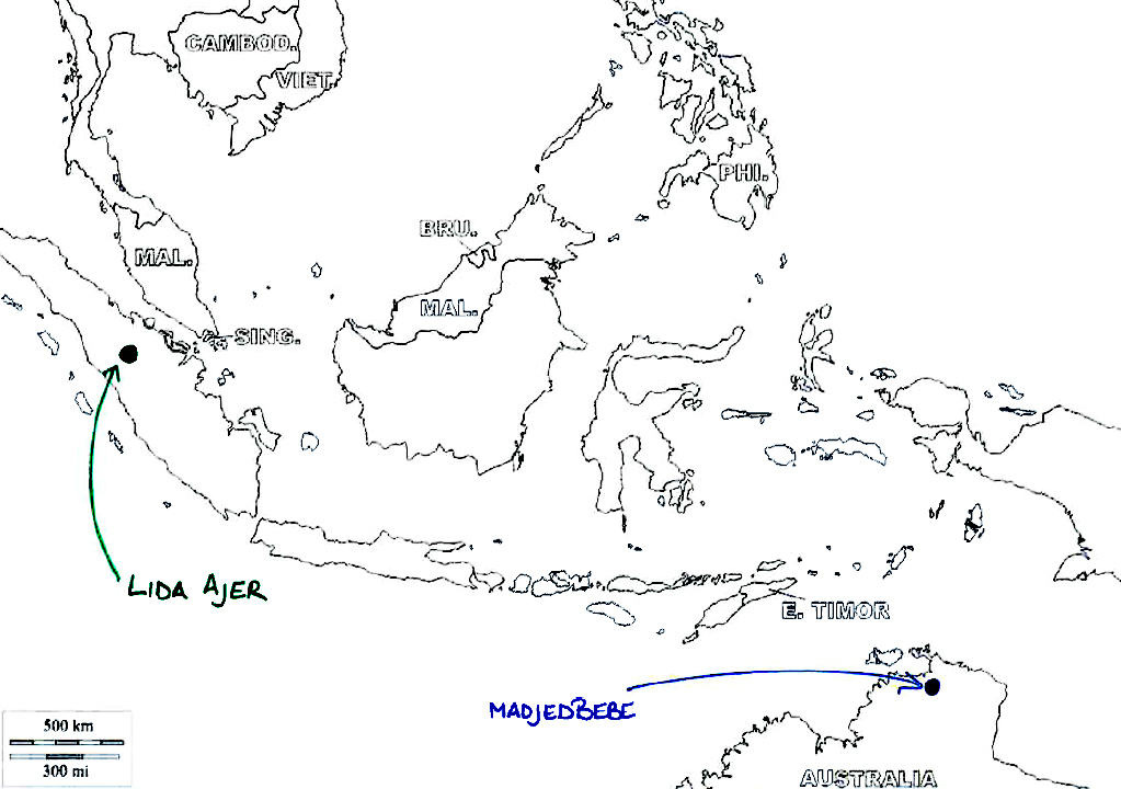 Humans in rain forests of Indonesia 70,000 years ago