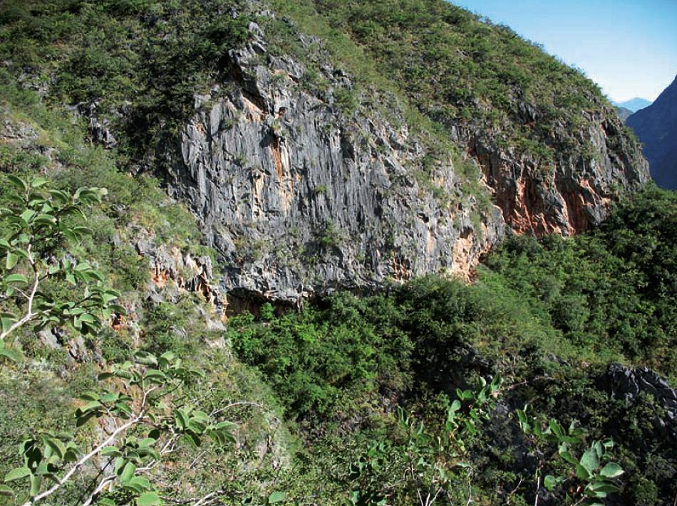 China's Jinsha River rock art