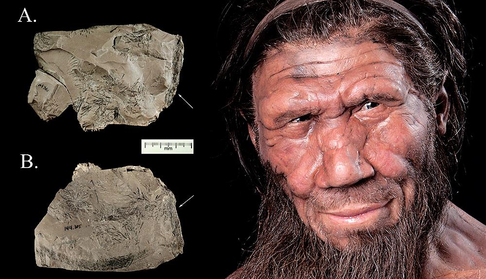 Neanderthal rock artefact