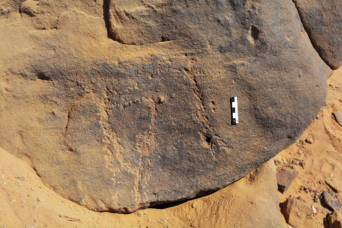 Neolithic engravings discovered in Egypt