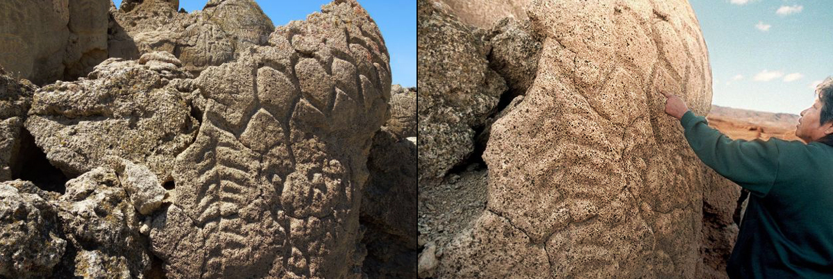 Petroglyphs discovered in Nevada