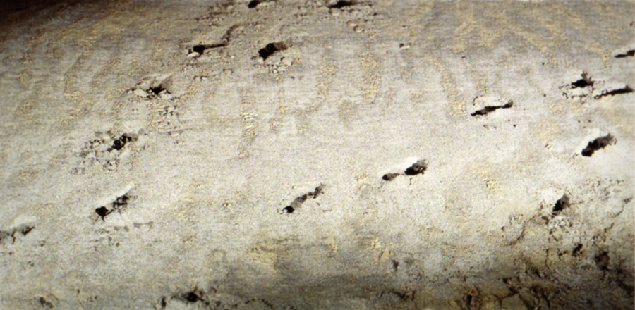 Footprints Sand Dune Paleolithic Cave Art Paintings Niaux France Archaeology