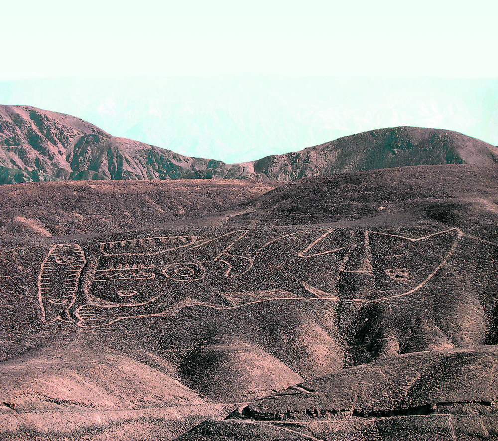 Orca geoglyph discovered in Peru
