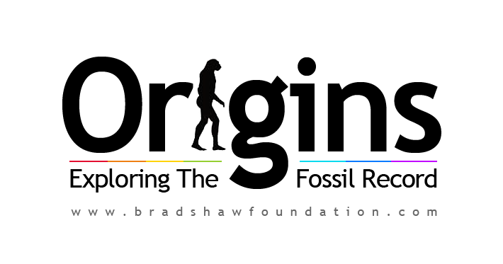 Origins Exploring Fossil Record Evolution Homo floresiensis