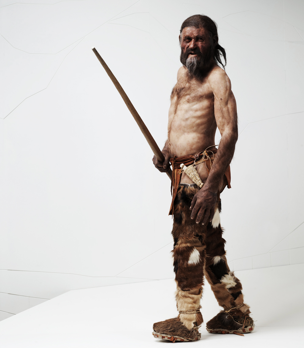 Ötzi the Iceman reconstruction at the South Tyrol Museum of Archaeology