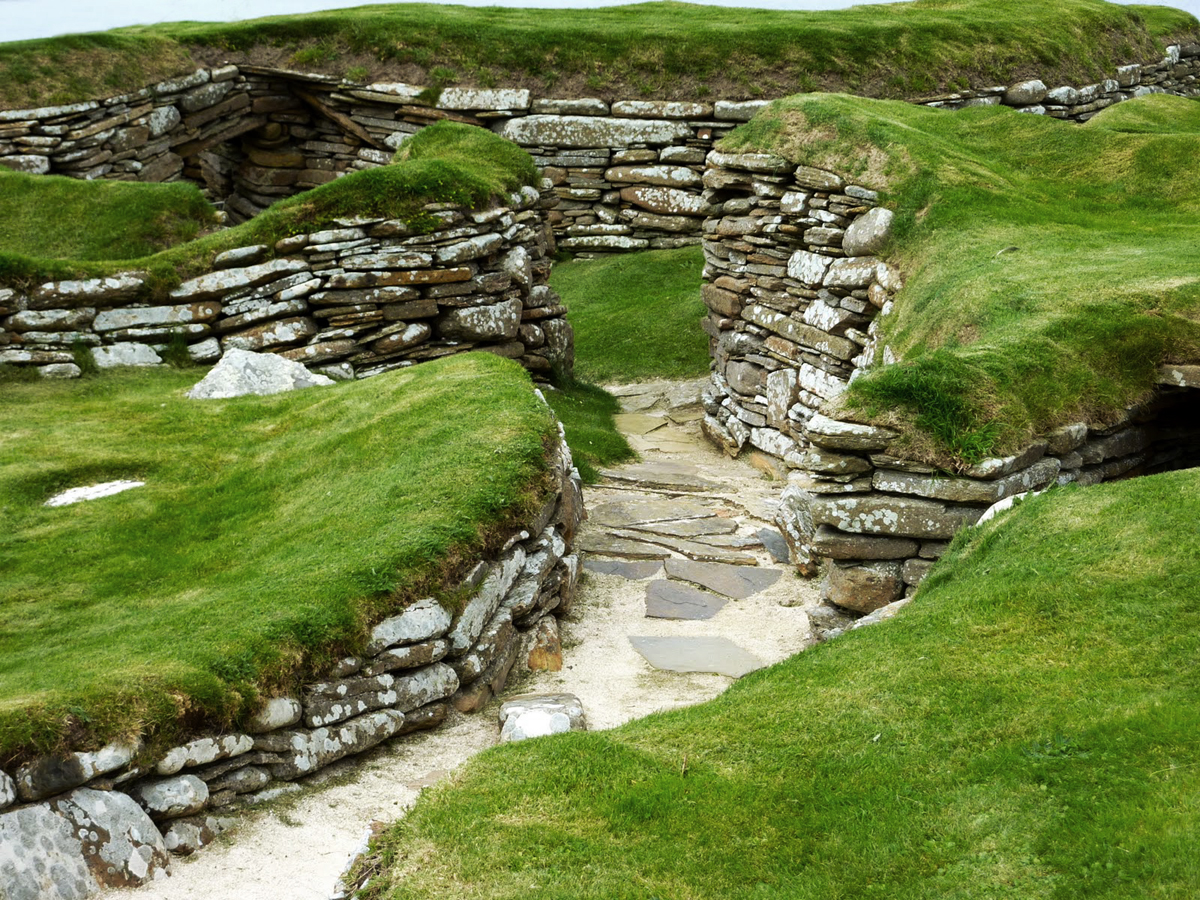 Neolithic cooking of voles at Skara Brae