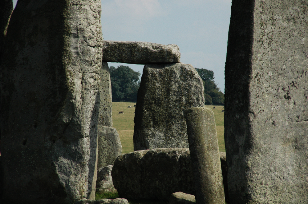Stonehenge origin of builders dna