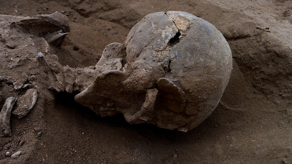 Prehistoric skeleton of a man found at Lake Turkana, Africa