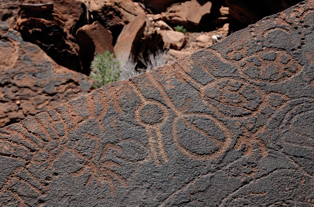 Geometric rock art of Twyfelfontein, Namibia, Africa