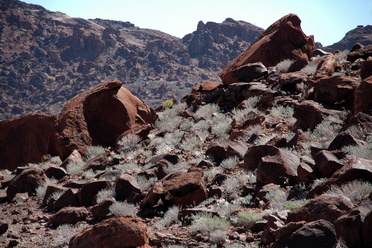 The rock art and petroglyph landscape of Twyfelfontein in Namibia, Africa
