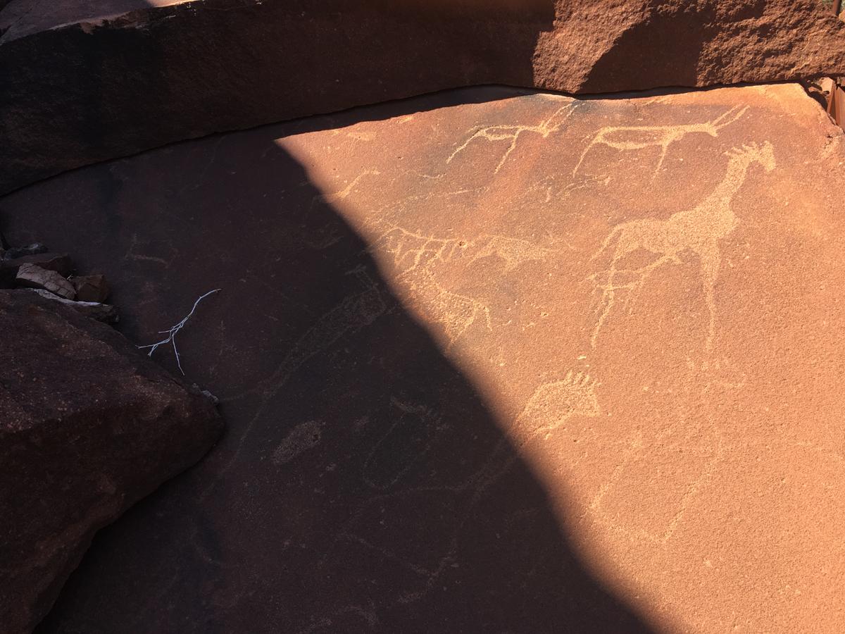 Rock engravings at Twyfelfontein in Namibia, Africa
