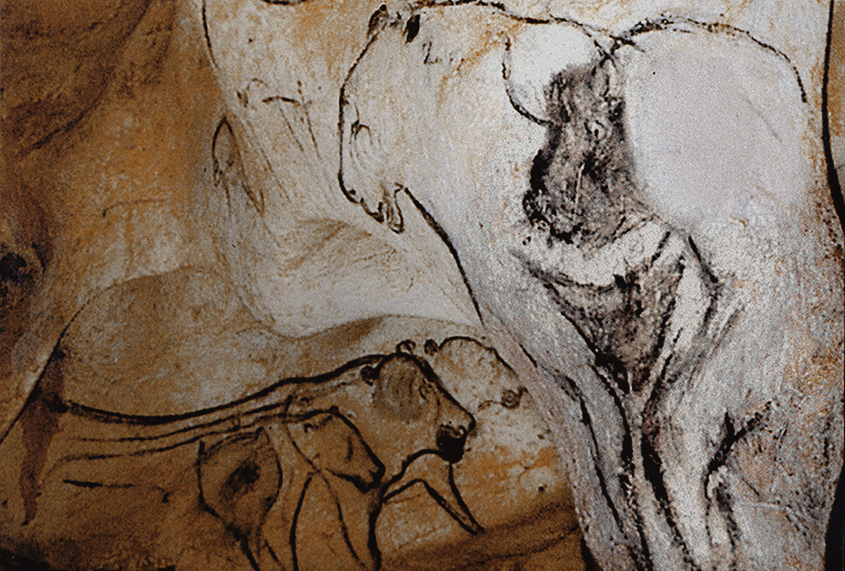 the sorcerer in chauvet cave