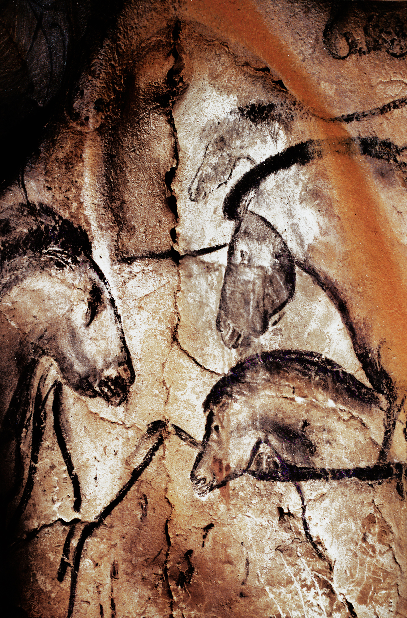 Visiting The Cave Art Paintings Of The Chauvet Cave Page 4