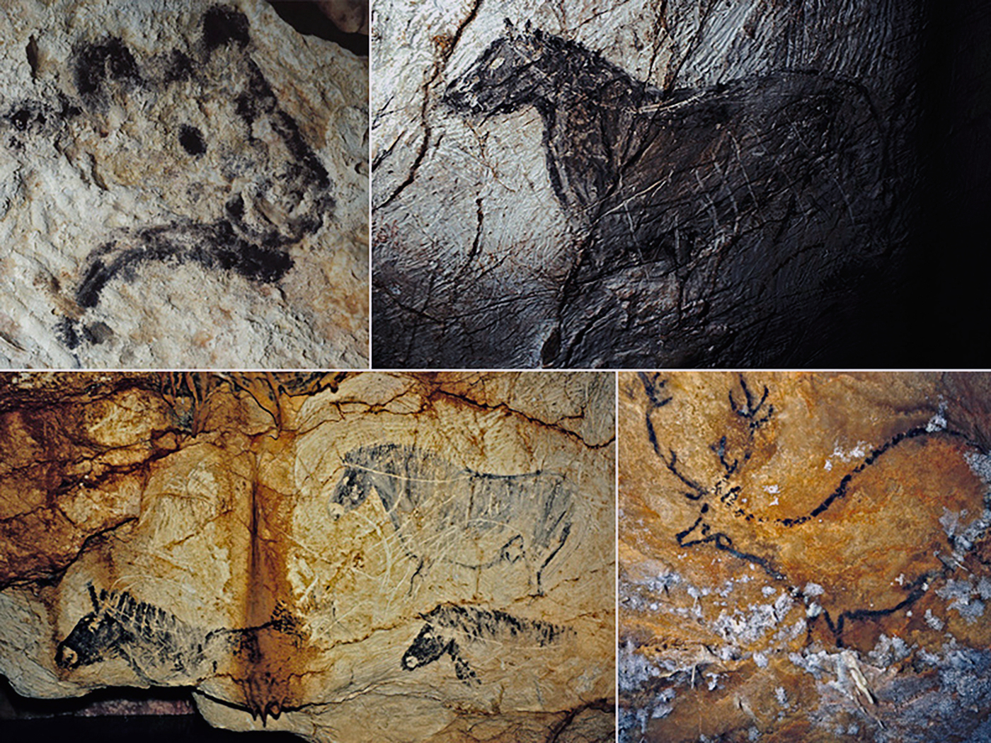 cosquer cave essay Ples of upper palaeolithic cave art known to archaeology  summary of  thematic, stylistic and technical aspects of chauvet's art, and the  gargas,  cosquer.