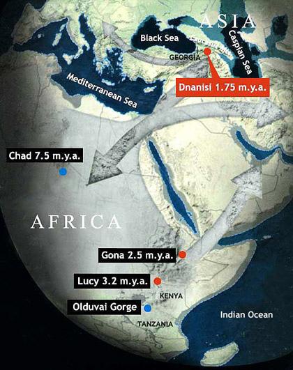 Dmanisi Georgia Map.Homo Dmanisi Fossil Skulls In Georgia