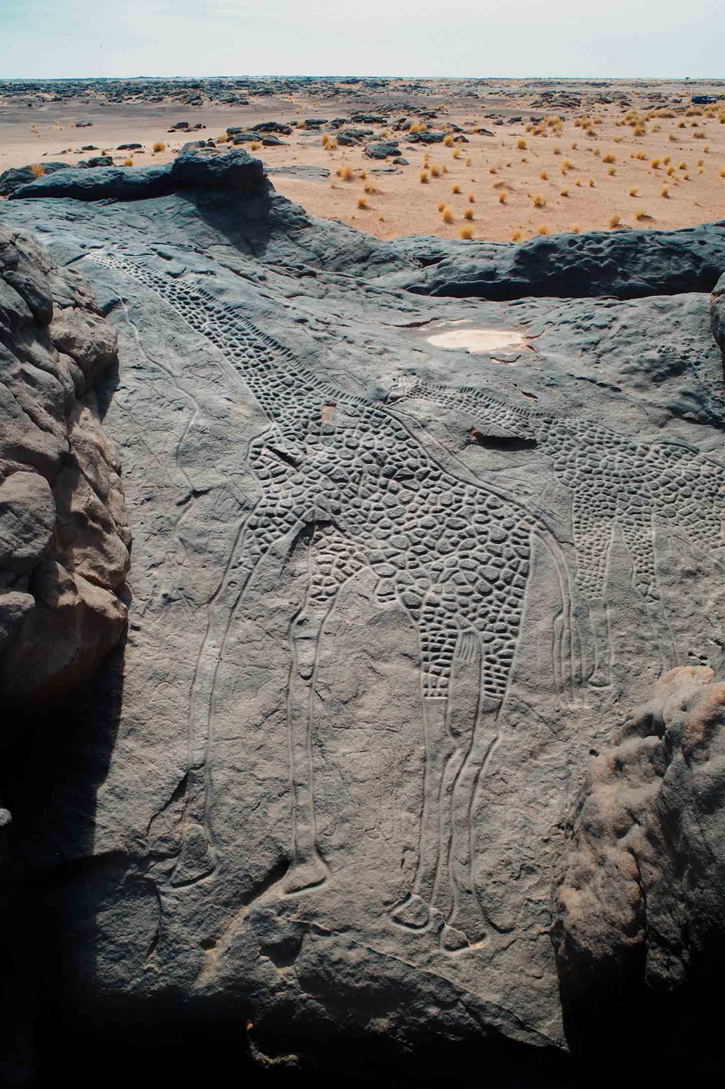 rock art petroglyph niger africa