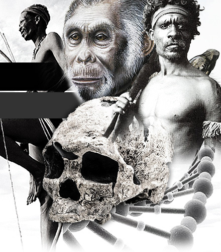 a short overview of human evolution Human evolution is the lengthy process of change by which people  video  short introduction to some of the evidence for human evolution , in the form of  fossils.