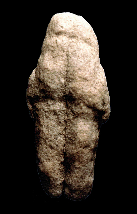 image Homo erectus 1995 by joe damato