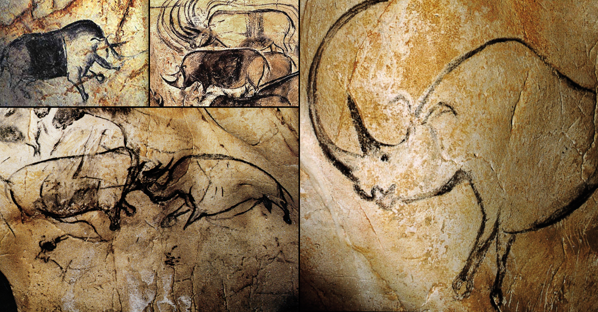 the cave art paintings of the chauvet cave