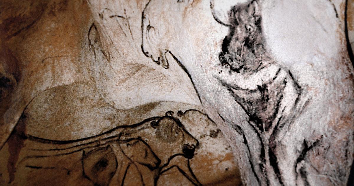 Venus Body Painting