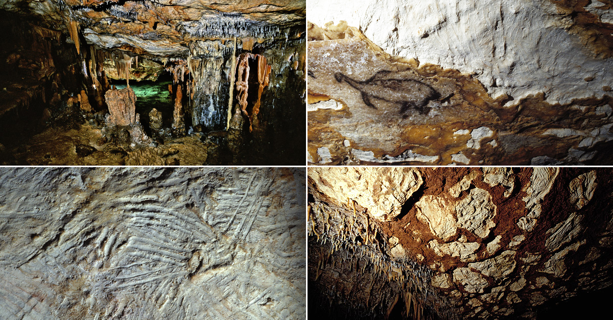 Cave Art Paintings Of The Cosquer Cave