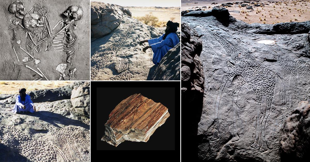the worlds largest rock art petroglyph dabous giraffe - 1200×628